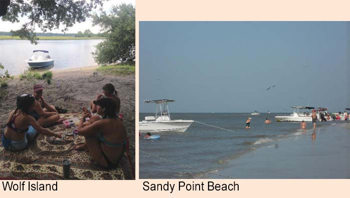 Wolf Island and Sandy Point Beach